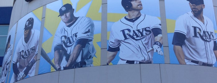 Tropicana Field is one of Baseball Stadiums To Visit....