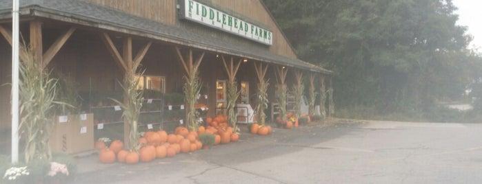 Fiddlehead Farms Marketplace is one of Posti che sono piaciuti a Lindsay.
