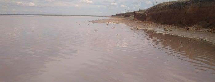 Сакские озёра is one of สถานที่ที่ Stanislav ถูกใจ.