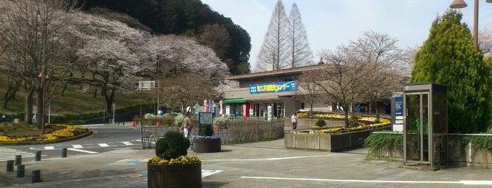 津久井湖観光センター is one of 宮ヶ瀬&津久井湖 ポタ=3=3=3.