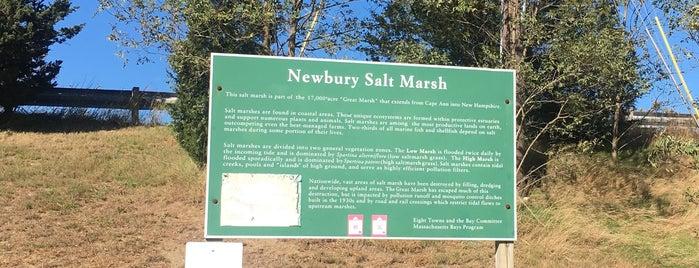 Newbury Salt Marsh is one of Where I've Been - Landmarks/Attractions 2.