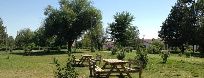 Çetin'in Yeri is one of Lugares favoritos de Selahaddin Eyyubi.