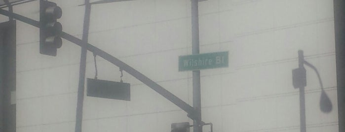 Wilshire Boulevard is one of Los Angeles CA.