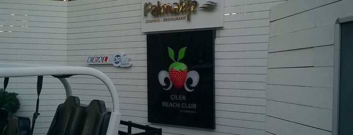 Çilek Beach Club is one of Plaj 2.