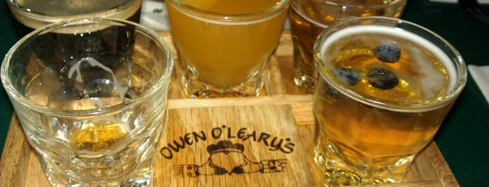 Owen O'Leary's is one of FAMILY TRAVEL PLANS.