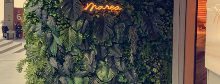Marea is one of Dxb.