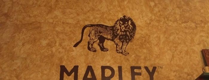 Marley Coffee is one of Lieux qui ont plu à Julian.