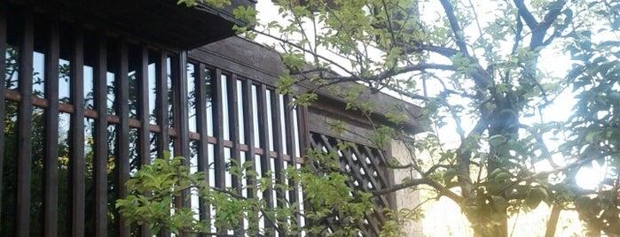 Rasitler Bag Evi is one of Tempat yang Disukai Cahide.