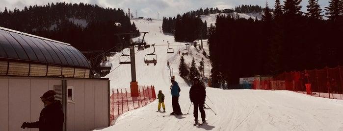 Türkiye Kayak Federasyonu Tesisleri is one of Locais curtidos por 𝐘𝐀𝐕𝐔𝐙 𝐊𝐀𝐙𝐀𝐍𝐂𝐈.