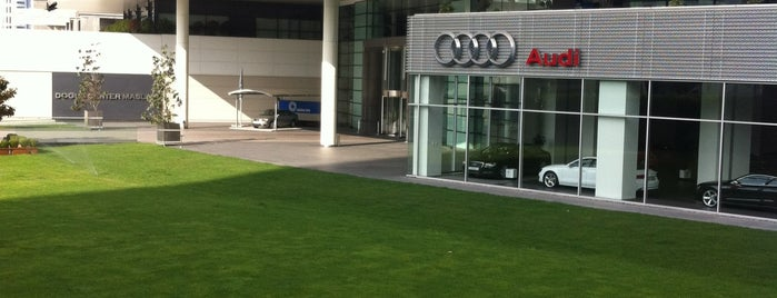 Audi Doğuş Oto is one of Lieux qui ont plu à Mustafa.