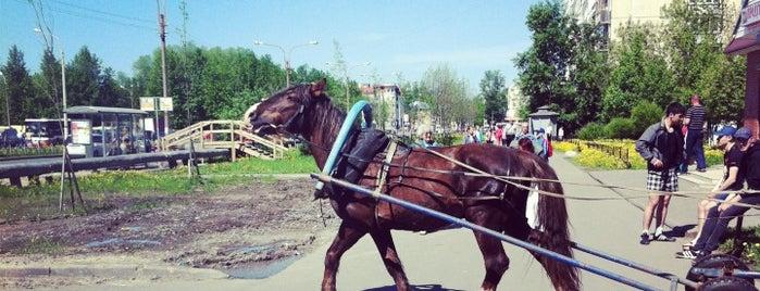 Новый Район is one of Tanya'nın Beğendiği Mekanlar.