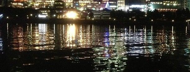 お台場海浜公園 is one of 日本夜景遺産.