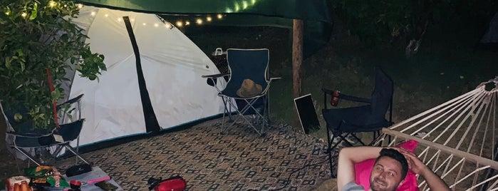 Camp Caretta is one of Kamp Alanları.