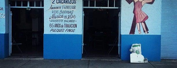 """Pulquería """"Los Cacarizos"""" is one of Pulcatonas."""