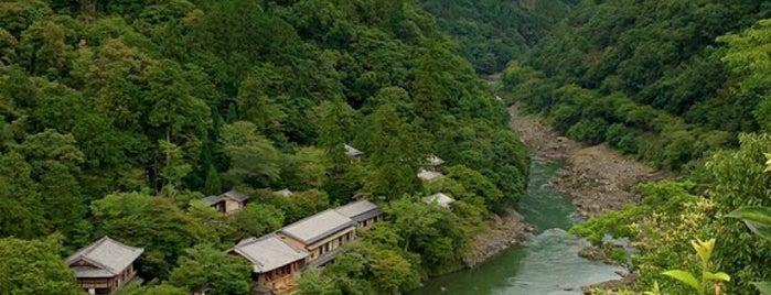 Arashiyama Park is one of Kyoto-Japan.