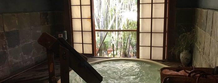 Tea House Spa is one of Hot Springs & Spas.
