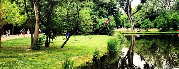 Vondelpark is one of Back to Netherlands ♥.