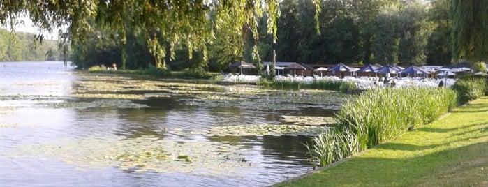 Donkmeer is one of สถานที่ที่ Jo ถูกใจ.