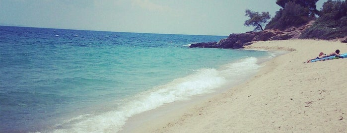 Lagomandra Beach is one of halkidiki.
