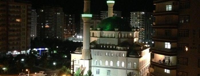 Bediüzzaman Camii is one of Orte, die Aykut gefallen.