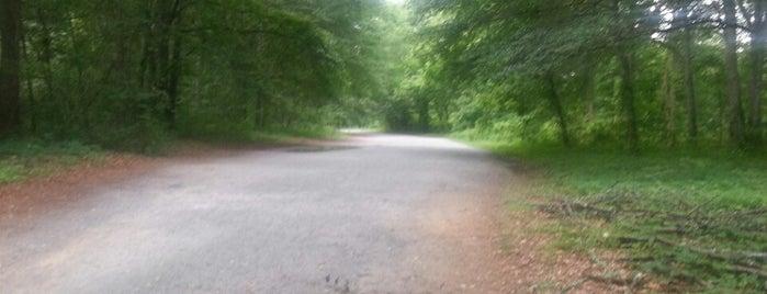 Chattahoochee Nature Trails & Park is one of Posti salvati di Jeff.