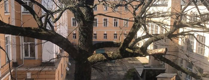 Внутрішній дворик Інституту філології is one of สถานที่ที่ Lena ถูกใจ.