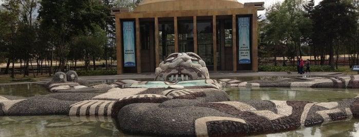 Jardin del agua is one of Orte, die Armando gefallen.