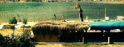 Seasnow Surf Club is one of Gidilecek Yerler.