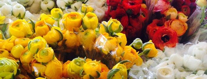 Mahallati Flower Market | بازارگل ميدان محلاتى is one of shopping centers.