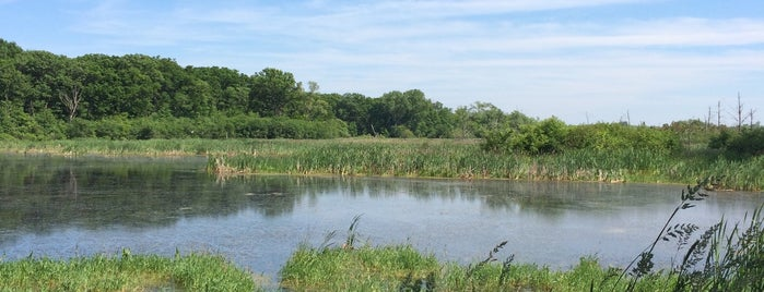 Volo Bog State Natural Area is one of Illinois State Parks.