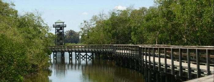Robinson Preserve is one of Anna Maria Island vacation.