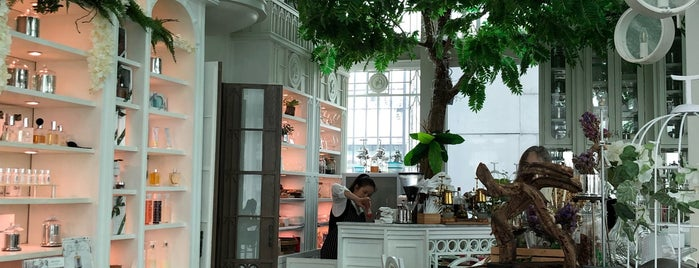 ORGANIKA HOUSE | Taste of Scents is one of Bangkok.