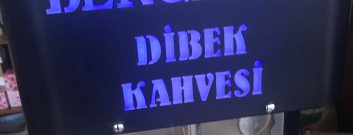 Berceste is one of ÇALIKUŞUさんの保存済みスポット.