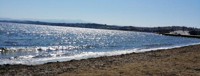 Belediye Plajı is one of Balıkesir Plajları.