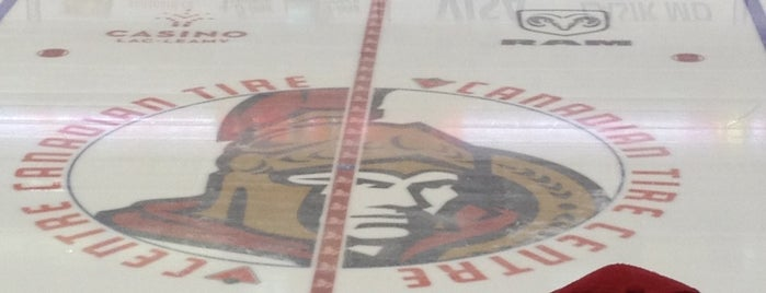 Canadian Tire Centre is one of NHL~2014 Venues....