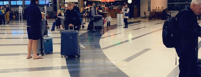 Houston International Airport Terminal D Pet Relief (Post Security) is one of สถานที่ที่ Tania ถูกใจ.