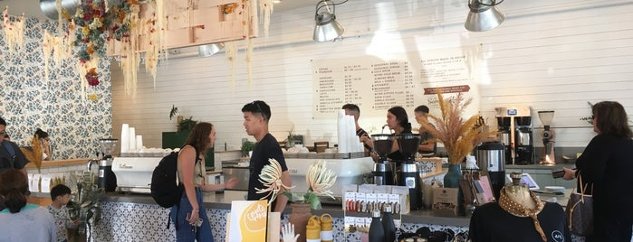 Scout Coffee Co is one of Central Coast.