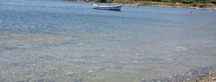 Teos Antik Liman is one of Lugares favoritos de didem.