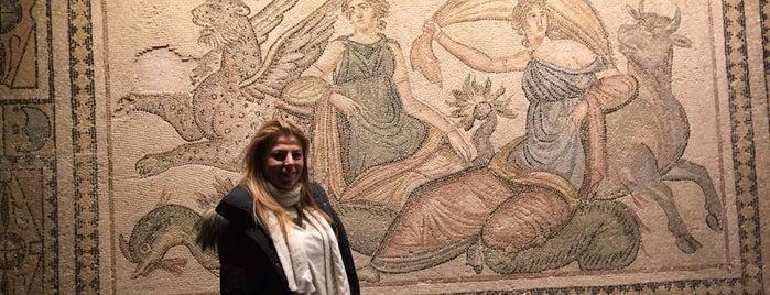 Zeugma Mozaik Müzesi is one of Posti che sono piaciuti a Güldal.