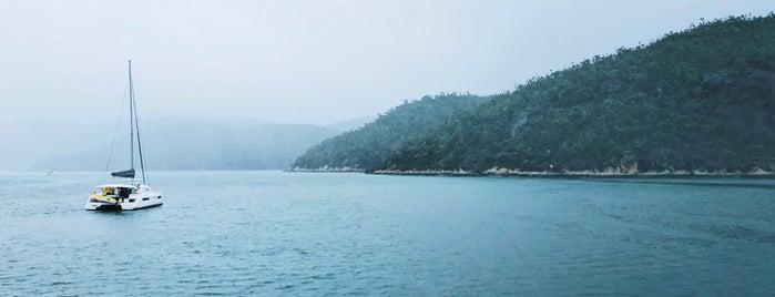 Hook Island Reef is one of Hamilton Island.
