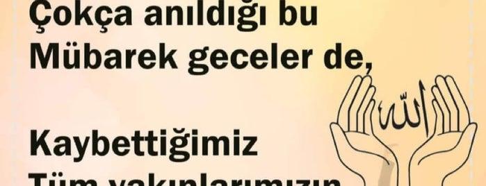Nürettin Tatlıcı is one of Lugares guardados de Aydın.