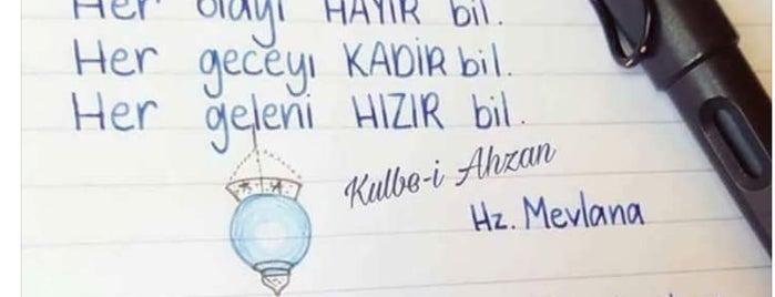 Paşa Turşucusu is one of HeiHakan'ın Beğendiği Mekanlar.