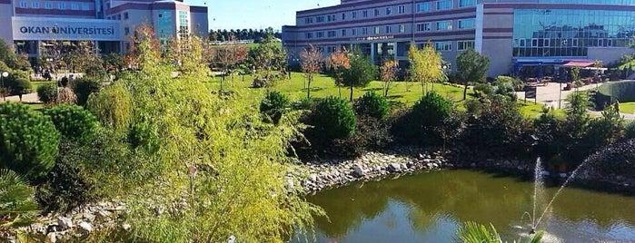 Okan Üniversitesi Yaşam Merkezi is one of สถานที่ที่ Figen ถูกใจ.