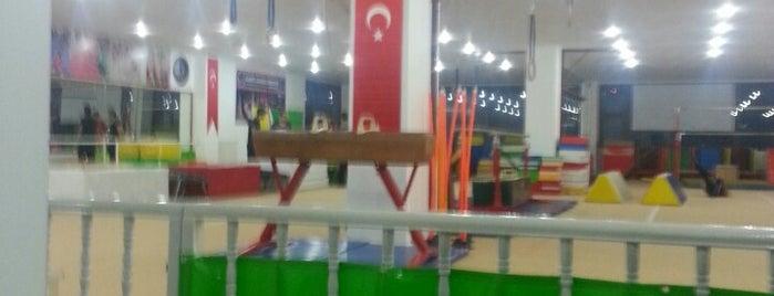 Olimpik Akademi Cimnastik Spor Kulübü is one of Orte, die Ibrahim gefallen.