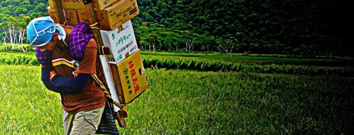 尾瀬ヶ原 is one of 山行記録.