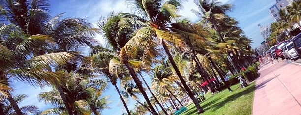 Lummus Park is one of Lugares guardados de Elizabeth.