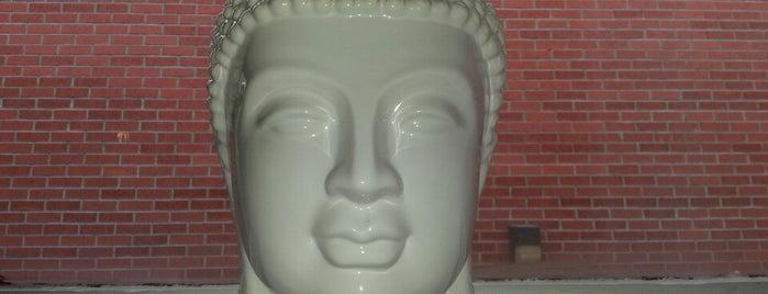 Bikram Yoga is one of yoga mtl.