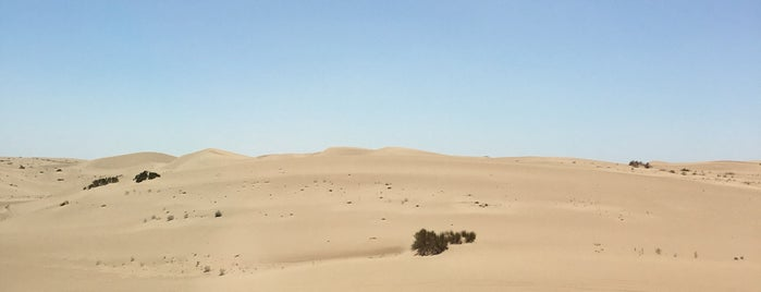 Imperial Sand Dunes is one of Holly 님이 좋아한 장소.