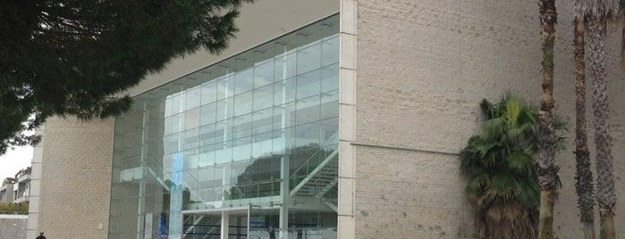 Teatro Camões is one of Lx museus e jardins gratis.
