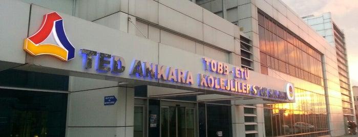 TED Ankara Kolejliler Spor Salonu is one of NTV Spor badge.